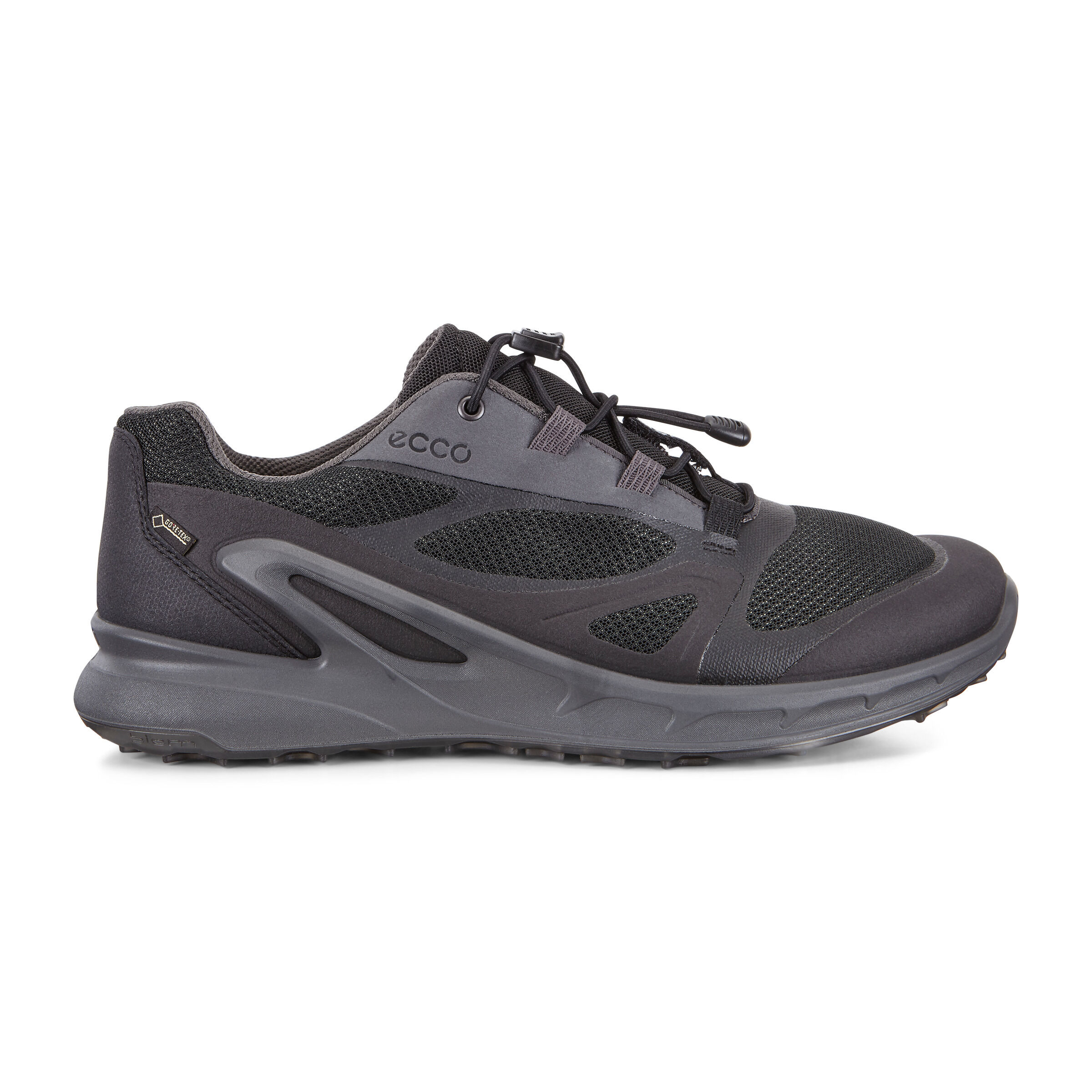ECCO Mens Biom Omniquest Gore-tex Hiking Shoe