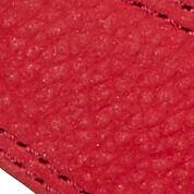 chili red/powder