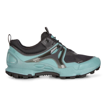ECCO Biom C-Trail Women's Low GTX Shoes