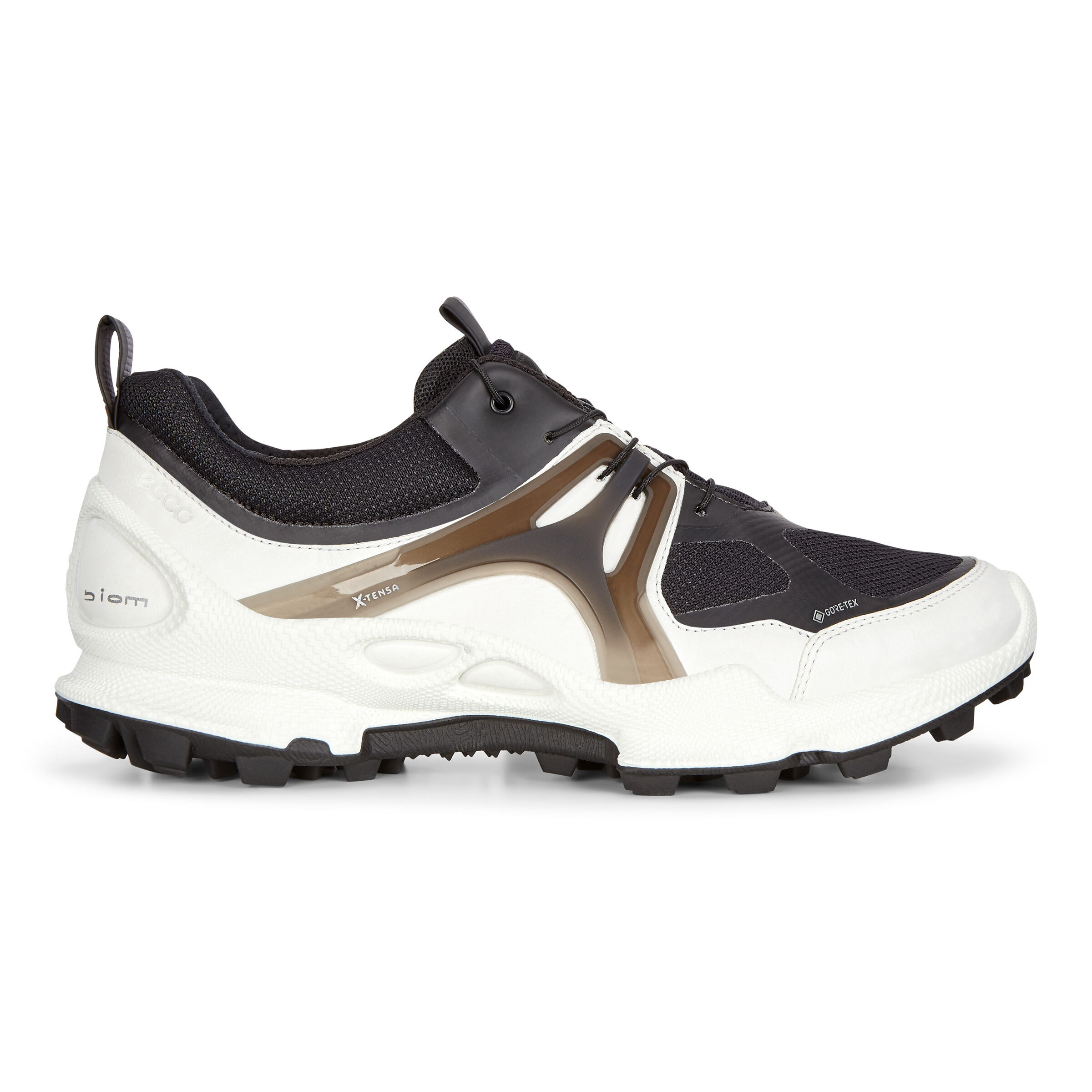 ECCO BIOM C-trail Womens Low GTX Shoes